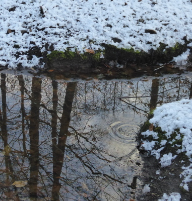 Schneesonntag