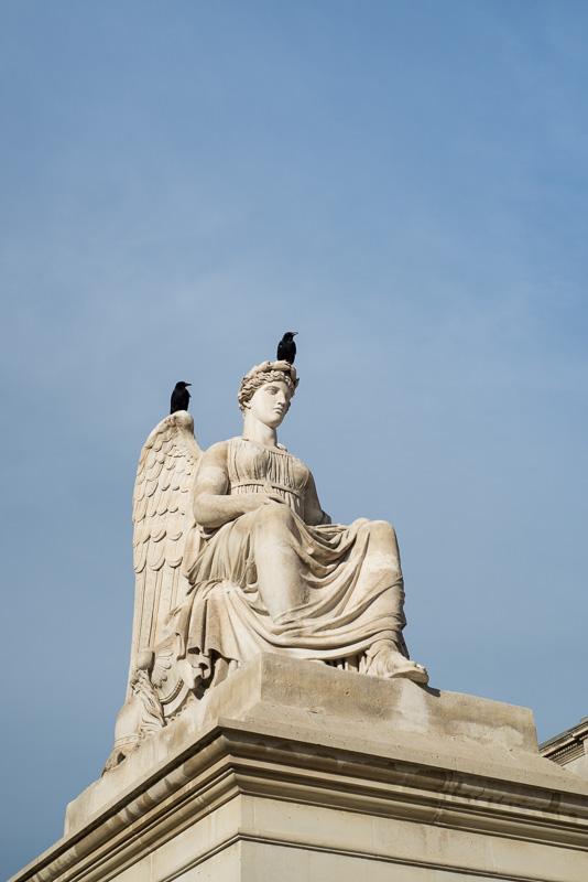 Rabe auf einer Statue