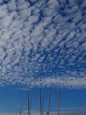 Westhaven Marina - Auckland - New Zealand - 26 August 2014 - 16:28