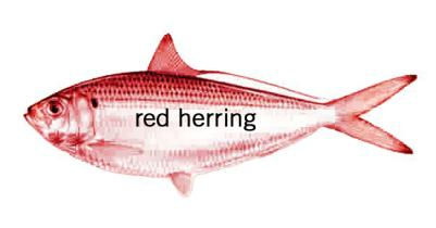 red herring:  (noun/phrase). a thing that draws the attention away from something important.