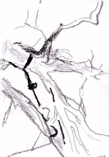 gestern unter Bäumen
