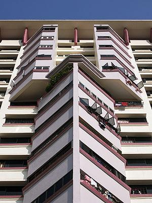 Block 289C - Bukit Batok Street 25 - Nature View - Singapore - 17 January 2008 - 9:15