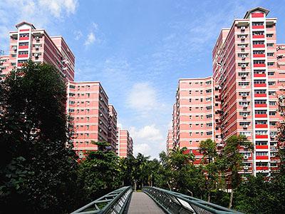 Elias Estate - Pasir Ris - Singapore - 30 December 2008 - 11:13