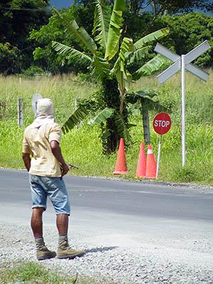 Nadi Backroad - Nadi - Viti Levu - Fiji Islands - 28 February 2011 - 15:10