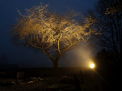 Friedhof - Freiburg-Tiengen - 13 December 2013 - 17:01