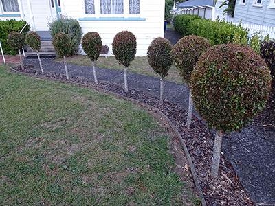 North Shore - Auckland - New Zealand - 26 February 2015 - 20:03