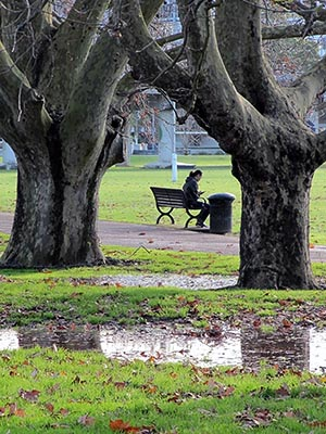 Victoria Park - Auckland - New Zealand - 25 June 2014 - 15:32