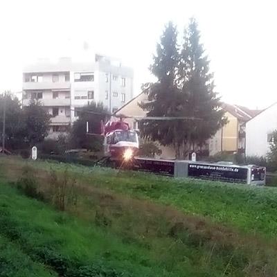 Im Hausgarten - Freiburg-Opfingen - 16 October 2019 - 18:27