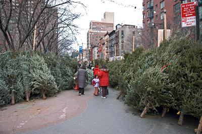 Weihnachtsbaumverkauf in Manhatten 2008