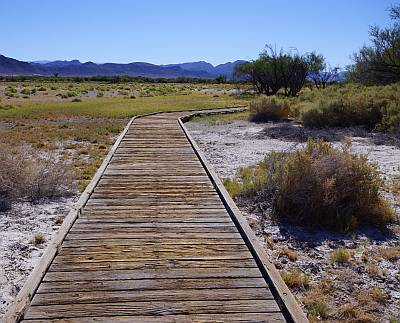 Ash Meadows National Wildlife Refuge, Nevada, 17-08-2014