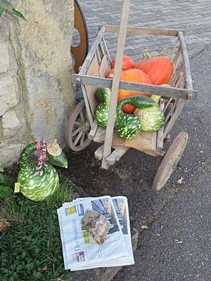Alte Breisacher Strasse - Freiburg-Tiengen - 25 September 2016 - 8:23