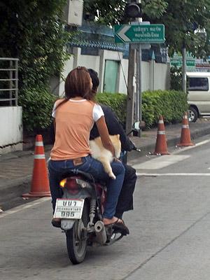 Sukhumvit Soi 105 Lasalle - Bang Na - Bangkok - 13 June 2013 - 7:38