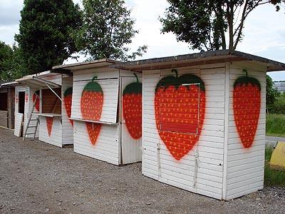 Friede den Erdbeerhütten