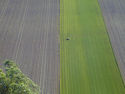 Felder - Breisach am Rhein - Ortsteil Niederrimsingen - 20090601 - 20:00