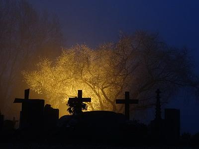 Friedhof - Freiburg-Tiengen - 13 December 2013 - 17:06