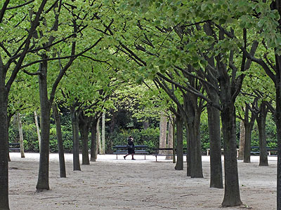 Jardin Luxembourg - Paris - 15 April 2012 - 18:49
