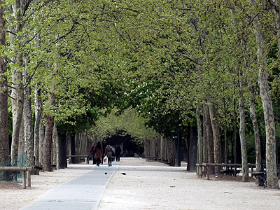 Jardin du Luxembourg - Paris - 15 April 2012 - 18:44