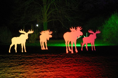 Westfalenpark - Winterleuchten