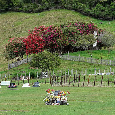 Kauae Cemetery - Henderson Road - Ngongotaha - Rotorua - New Zealand - 12 September 2014 - 14:18