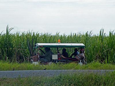 Queens Road - Nadi to Lautoka - Viti Levu - Fiji Islands - 21 October 2009 - 14:57