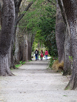 Public Gardens - Oamaru - New Zealand - 8 October 2015 13:23