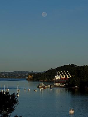 Little Shoal Bay - Auckland - New Zealand - 6 April 2015 - 8:15