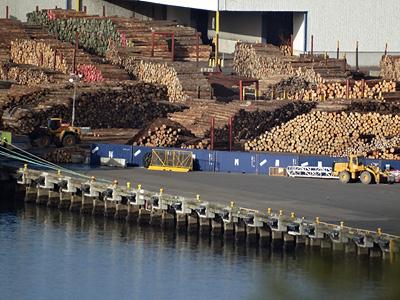 Port - Wellington - New Zealand - 26 April 2014 - 8:50