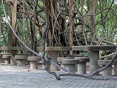 Khao Rang - Phuket - 22 October 2013 - 15:28