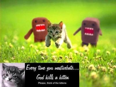 Please, think of the kittens