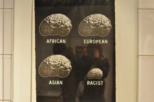 Brains around the world