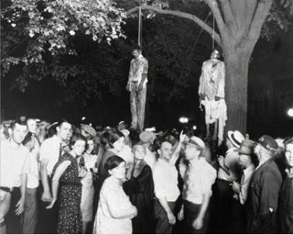 Strange Fruit Hanging From Poplar Tree