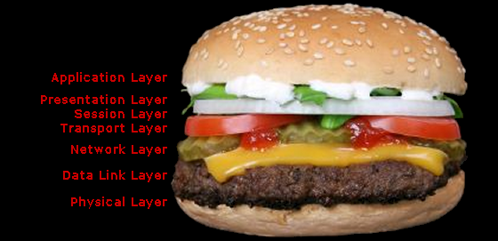 Seven Layer Reference Model