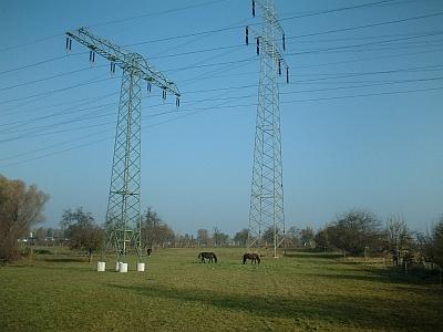 Energieversorgung - Hochspannungsmasten bei Coswig und grasende Pferde