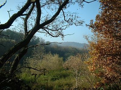 Blick vom Elbradweg über die Gauernitzer Insel auf die linkselbischen Täler