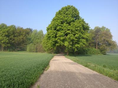 Auf dem Jakobsweg zwischen Kamenz und Königsbrück