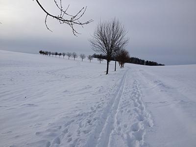 Dippoldiswalde, Firstenweg im Winter