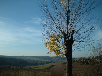 Blick ins Weißeritztal bei Dippoldiswalde