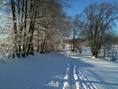 Loipe zwischen Oberhäslich und Dippoldiswalde Winter 2010
