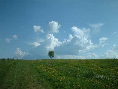 Malerweg bei Lohmen
