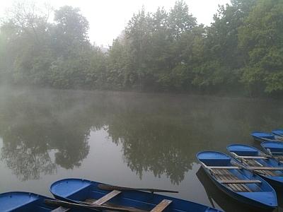 Boote im Morgennebel auf dem Carolasee im Großen Garten