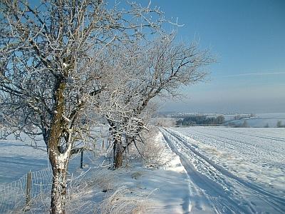 Strape vom Rundteil nach Börnchen im Schnee