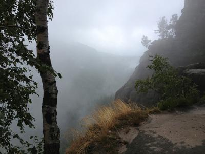 Heringsgrund im Nebel