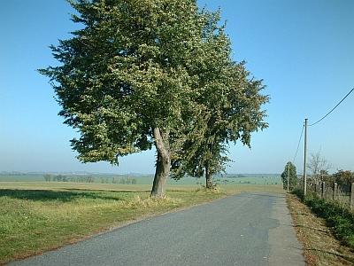 Die Großenhainer Pflege bei Rottewitz