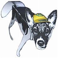 Falthund